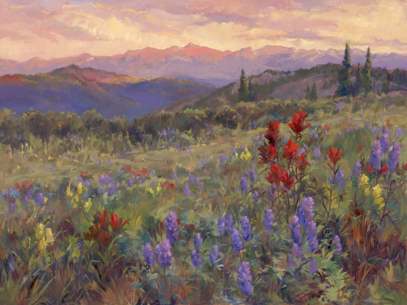 Indian Paintbrush Sunset - Shrine Mountain